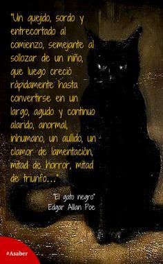 Black cats the black and edgar allan poe on pinterest - El gato negro decoracion ...