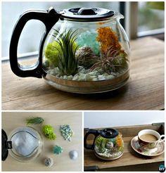 Coffee Pot Terrarium-DIY Mini Fairy Terrarium Garden Ideas