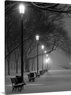 Photos Washington D C Turns White In First Big Snowstorm Of The Season - Weihnachten Nature Aesthetic, City Aesthetic, Dark Photography, Black And White Photography, Dark Pictures, Beautiful Pictures, Dark Pics, Beauty Dish, Black And White Aesthetic