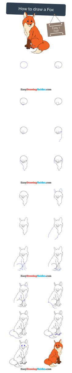 Learn How to Draw a Fox: Easy Step-by-Step Drawing Tutorial for Kids and Beginners. #fox #drawing #tutorial. See the full tutorial at https://easydrawingguides.com/how-to-draw-a-fox/