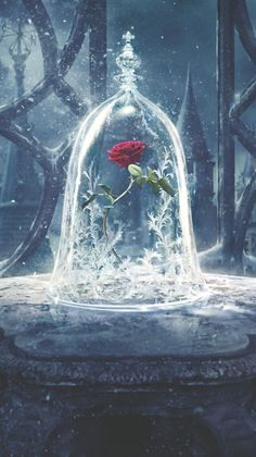 Beauty And The Beast 2017 Phone Wallpaper Beauty And The Beast 2017 Phone Wallpaper Moviemania Movie Wallpapers, Cute Wallpapers, Wallpaper Backgrounds, 2017 Wallpaper, Trendy Wallpaper, Disney Phone Wallpaper, Cartoon Wallpaper, Beauty And The Beast Wallpaper Iphone, Disney Princess Pictures