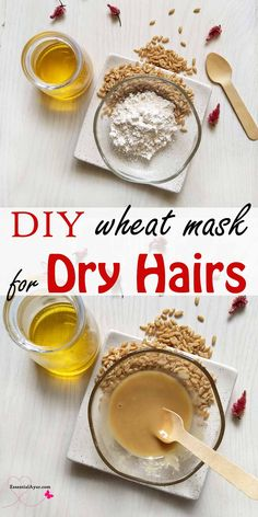 DIY wheat flour mask for dry hairs. Long shiny and healthy hair is and easily achievable with hair care and these wheat flour hair masks for hair to grow longer and faster. #dryhairs #hairremedy #hairmaskdiy #haircare #wheatflour #growhairs #smoothe #shinyhairs Diy Hair Mask, Hair Masks, Hair Remedies, Herbal Remedies, Diy Shampoo, Hair Rinse, Oily Hair, Natural Haircare, Beauty Recipe