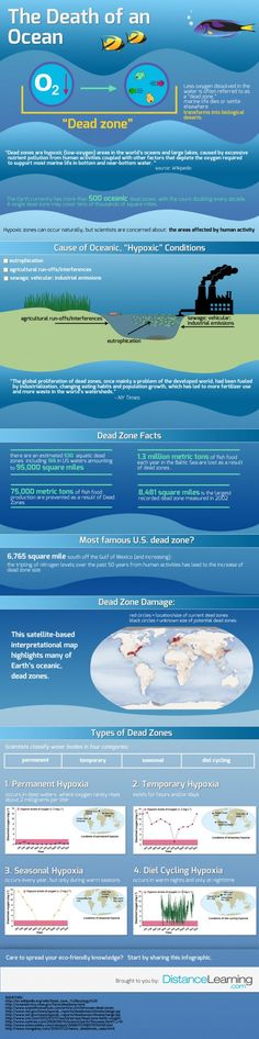 The death of an ocean  Infographic
