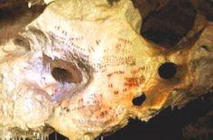 Complejo kárstico de cueva Navarro IV, ubicado en la Bahía de Málaga