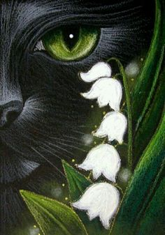 """Black Cat and May Lily of the Valley Flowers"" par Cyra R. Lily Of The Valley Flowers, Black Cat Art, Black Cats, Pastel Art, Cat Drawing, Art Portfolio, Beautiful Cats, Animal Paintings, Pet Birds"