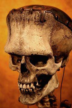 Wouldn't this make a great print for Halloween? Thomas Kuebler's Frankenstein Skull Beetlejuice, Frankenstein Art, Frankenstein Pictures, Skull Reference, Frankenstein's Monster, Bizarre, Creature Feature, Skull And Bones, Horror Art