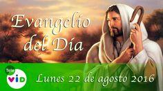 Evangelio Del Día (Agosto 22 De 2016)  - Tele VID