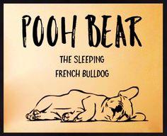Pooh Bear, the sleeping French Bulldog ❤