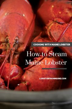 How to Steam Fresh #MaineLobster: Choose a pot large enough to hold all the lobsters comfortably; do not crowd them. A 4- to 5-gallon pot can handle 6 to 8 pounds of lobster. Put 2 inches of seawater or salted water in the bottom of a large kettle. Set a steaming rack inside the pot and bring to a rolling boil over high heat. Add the live lobsters one at a time, cover the pot, and start timing. Halfway through, lift the lid (careful—the steam is hot) and shift the lobsters around so they cook ev