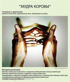 http://hlebopechka.ru/gallery/albums/userpics/120535/____________1.jpg