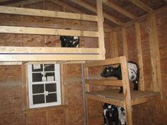 Goat barn idea....Biiilllll????  Honey? Oh well, with my luck they hide up there at milking time! LOL