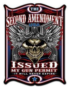 53ad53ef3 632 Best Protect your 2nd amendment with the right gun images in 2019