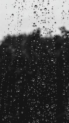 water dew on window photo – Free Black-and-white Image on Unsplash Cute Backgrounds, Wallpaper Backgrounds, Rain Drops On Window, Rain On Window, Rain Wallpapers, Rain Pictures, Bokeh Photography, Instagram Story Ideas, White Image