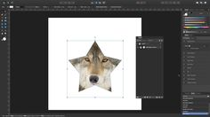 Affinity Designer - Tutorial 18 - How to use a mask