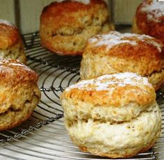 scones + lots of useful info about halogen ovens