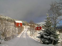 Christmas card I Love Snow, Winter Love, Heaven On Earth, Beautiful Scenery, Painted Rocks, Winter Wonderland, Christmas Cards, Explore, Places