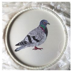 Ellie Mac Embroidery . Pigeon on satin .