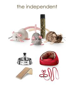 The Independent: PetLinks Lil' Creepers Refillable Catnip Mice Santa's Nice List, Cat Things, Joy And Happiness, Cuddling, Jasper, Fur Babies, Your Pet, Fun Stuff, Lily