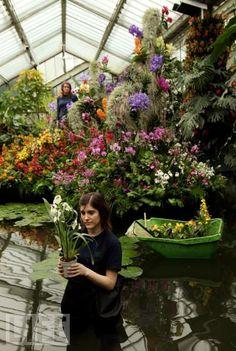 royal botanical gardens at kew