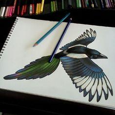 Tattoo inspiration of beautiful magpie.
