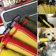 Tug and Go the better made firehose dog toys by TAGdogtoys Dog Chew Toys, Dog Toys, Fire Hose Crafts, Dog Shop, Kinds Of Dogs, Repurposed, Leather Crafts, Pets, Dog Stuff