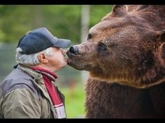 Only in Finland, they have know each others since the bear was a baby. Santa Claus Village, Le Pilates, Wonderful Picture, European Countries, Brown Bear, Wilderness, Life Is Good, Corgi, Cute