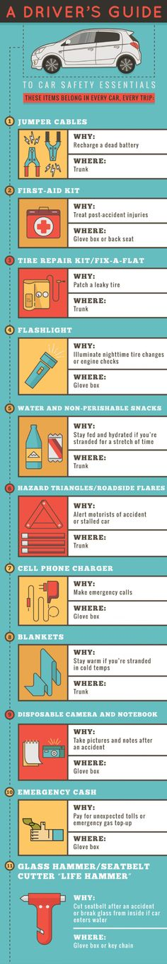 A Driver's Guide to Car Safety Essentials Infographic