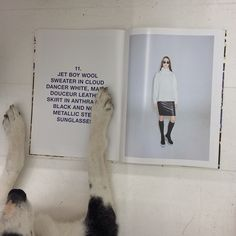 Our furry office assistant Smikka loves Marie Douceur leather skirt!