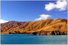 Fietstocht door Nieuw Zeeland 06