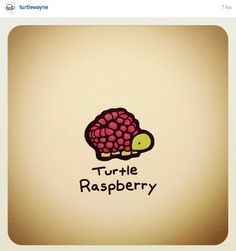 Raspberry Turtle Life, Tiny Turtle, Little Doodles, Cute Doodles, Amazing Drawings, Cute Drawings, Animal Drawings, Kawaii Turtle, Tiny Dinosaur