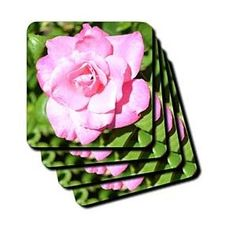 Natures Expression of a Rose III - Coasters