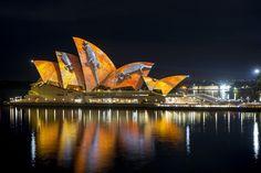 Sydney Opera House lit up during Vivid Sydney