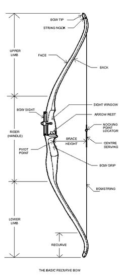 recurve bow diagram    my new study guide