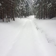"via. @tatrzanskiparknarodowy ""Szlak narciarski do Kondratowej. Teraz. #tpn #tatrzanskiparknarodowy""  buff.ly/2fVXBlV"