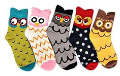 V28 Womens Cute Owl Various Pattern Mixed Color Soft Socks One Size 5 Mixed Colors Set * Details can be found by clicking on the image.