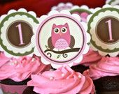 Birthday/ Baby Shower Modern Owl Cupcake Toppers- Girl or Boy Owl Cupcakes, Fondant Cupcakes, Cupcake Cakes, Cupcake Wrappers, Owl Birthday Parties, Girl Birthday, Birthday Ideas, Birthday Stuff, Princess Birthday