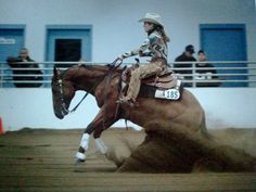 reining horse  I really want to learn this....note to self look for a trainer LOL