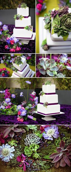succulent wedding cake design by Erica OBrien, amazing southern california wedding cakes, images by Charla Blue Photography