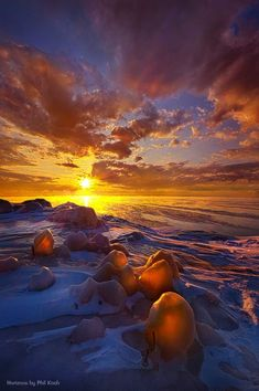 """""""Lost Titles Forgotten Rhymes"""" by Phil Koch"""