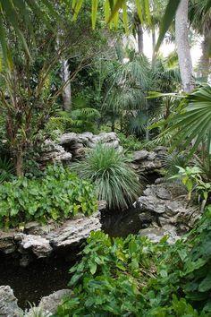 New backyard tropical ideas jungles 31 ideas Ponds Backyard, Backyard Patio, Backyard Landscaping, Landscape Architecture, Landscape Design, Garden Design, Tropical Landscaping, Tropical Plants, Tropical Gardens