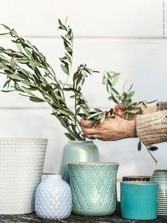 100+ bästa bilderna på Krukor & Växter   växter, krukor, ikea