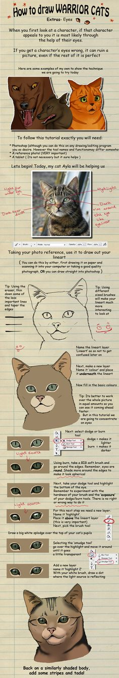 How to draw Warrior Cats eyes by *heylorlass on deviantART