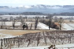 View of the Blue Ridge Mountains after a late-winter snow at Veramar Vineyard in the northern Shenandoah Valley of Virginia #mountains #vineyard #viticulture #snow #farmland #rural #vawine #clouds #grapes #shenandoahvalley #virginia #blueridgemountains
