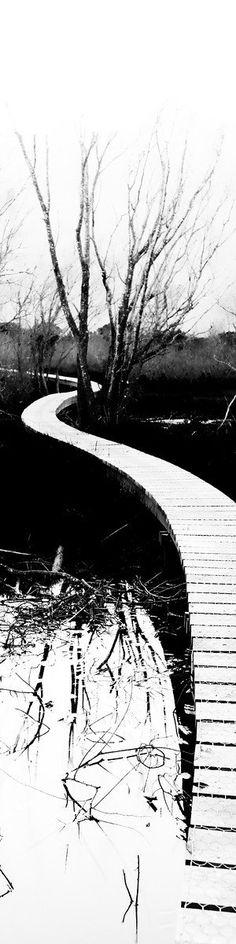 camino a Glenorchy, Nueva Zelanda