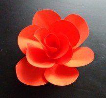 Svadobná výzdoba: Papierové ruže | Svadobné šaty a agentúra Bratislava