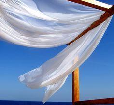 Summer breeze . . .