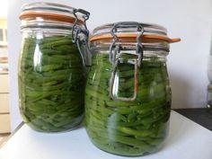 4 JUILLET - Haricots lacto-fermentés...haricots conservés - PASSION POTAGER