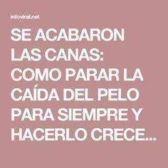 SE ACABARON LAS CANAS: COMO PARAR LA CAÍDA DEL PELO PARA SIEMPRE Y HACERLO CRECER COMO LOCO !! – Info Viral