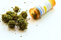 時代は進み、第2次世界大戦のときにGHQマッカーサーが日本に来まして、アメリカによって大麻取締法ができました。