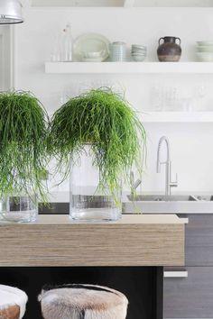 Natural elements as accents Scandinavian Kitchen, Scandinavian Interior, Indoor Garden, Indoor Plants, Napa Style, Garden Of Earthly Delights, Kitchen Dinning, Dining, Eco Friendly House